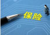 看好A股H股投资机会 增量险资料择机入市 - 中国企业网财经